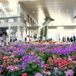 osaka-gare-fleur-01.jpg