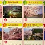 Horizonsdujapon-Hanami schedule