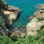 truquoise-japon