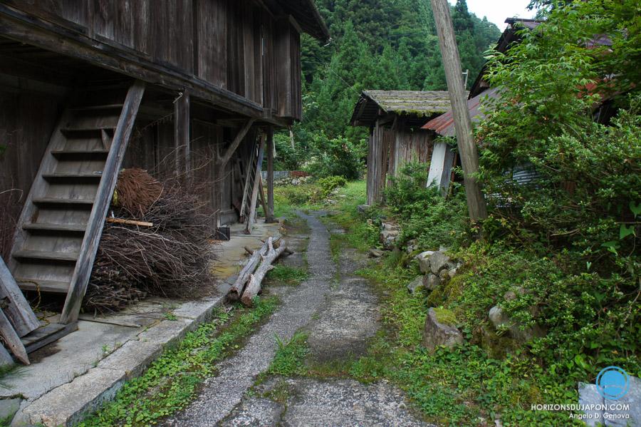 Itaibara-tottori-japon-06