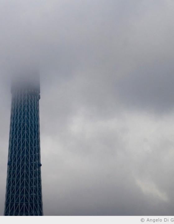 338 mètres de Tokyo Sky Tree