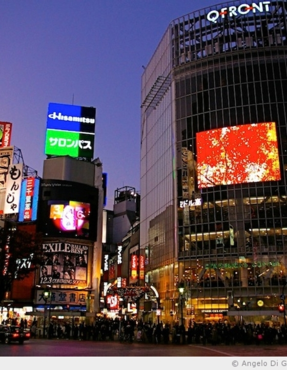 Shibuya et son carrefour piéton
