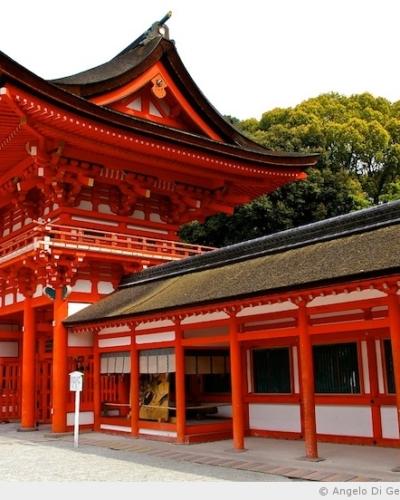 Le sanctuaire Shimogamo