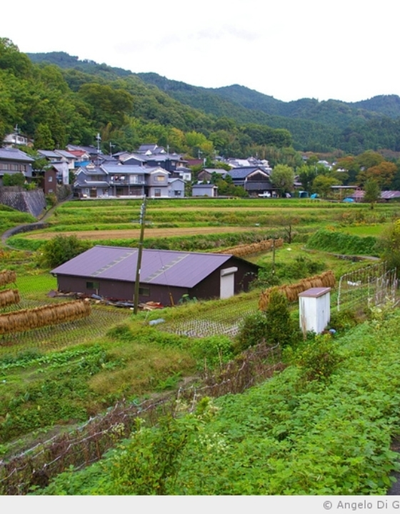 Le berceau du Japon