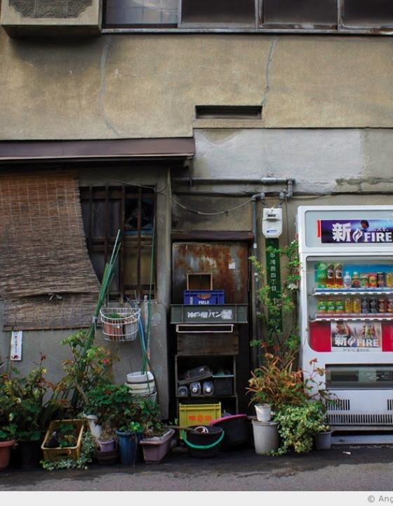 Le Japon de l'envers