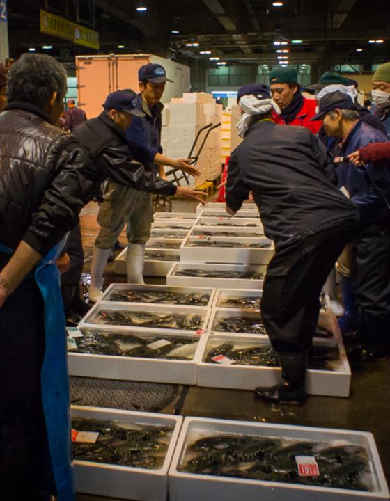 Osaka kitchen : fin du tournage sur place