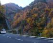 Découvrez Hiroshima et Miyajima avec Yann