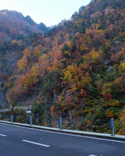 En voiture de Tokyo à Osaka en passant par les Alpes japonaises