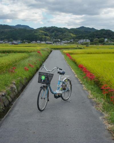 Ce Japon secret exploré toutes ces années